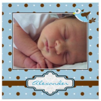 Polka dot, bird baby photo birth announcements