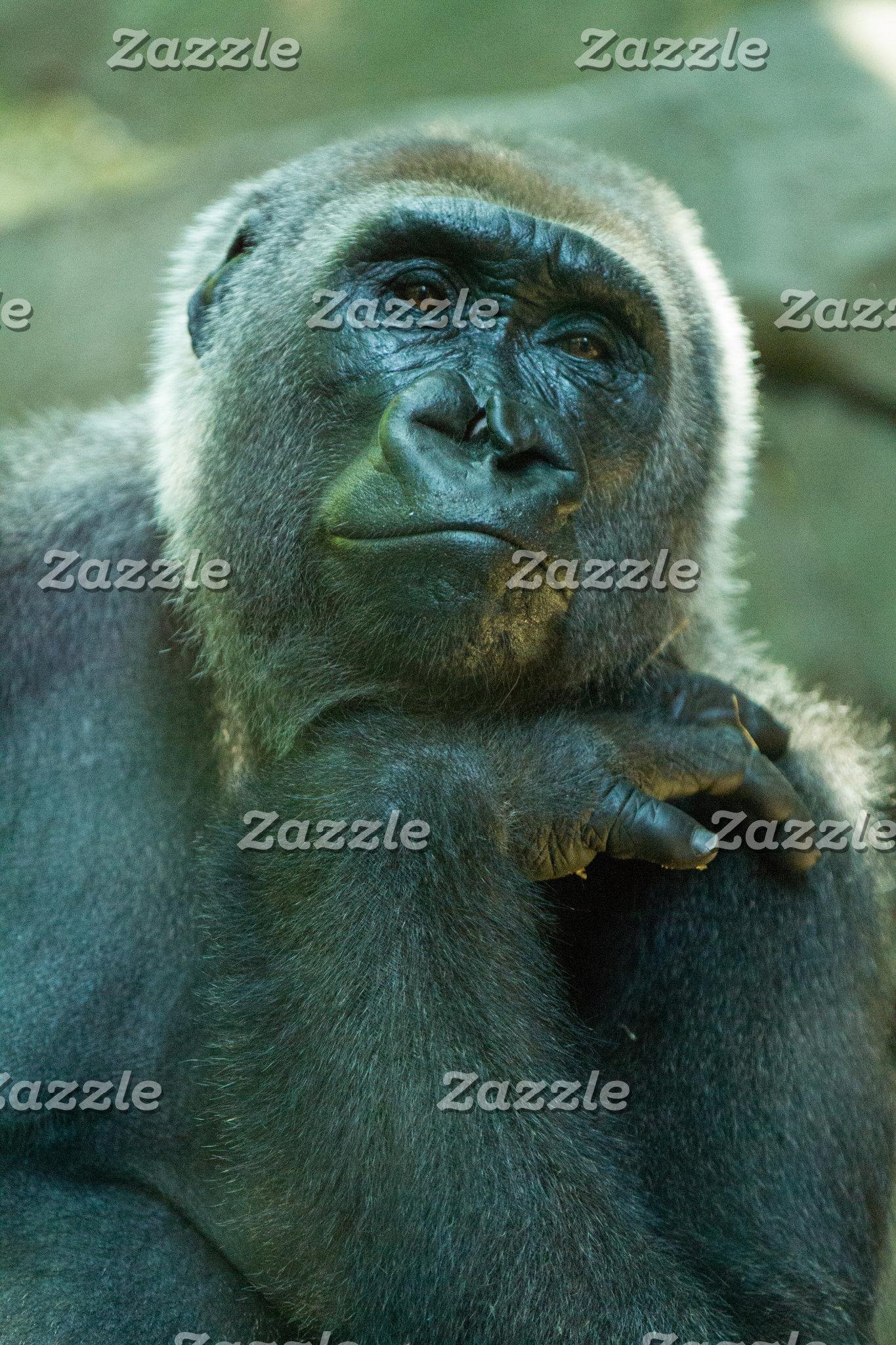 Fed up Gorilla