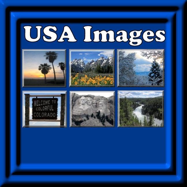 USA Travel Souvenirs