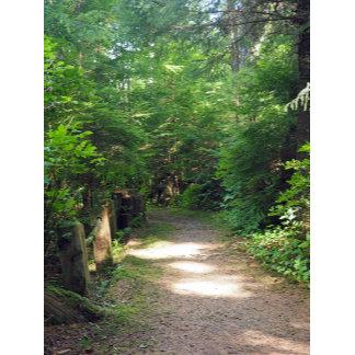Path 842