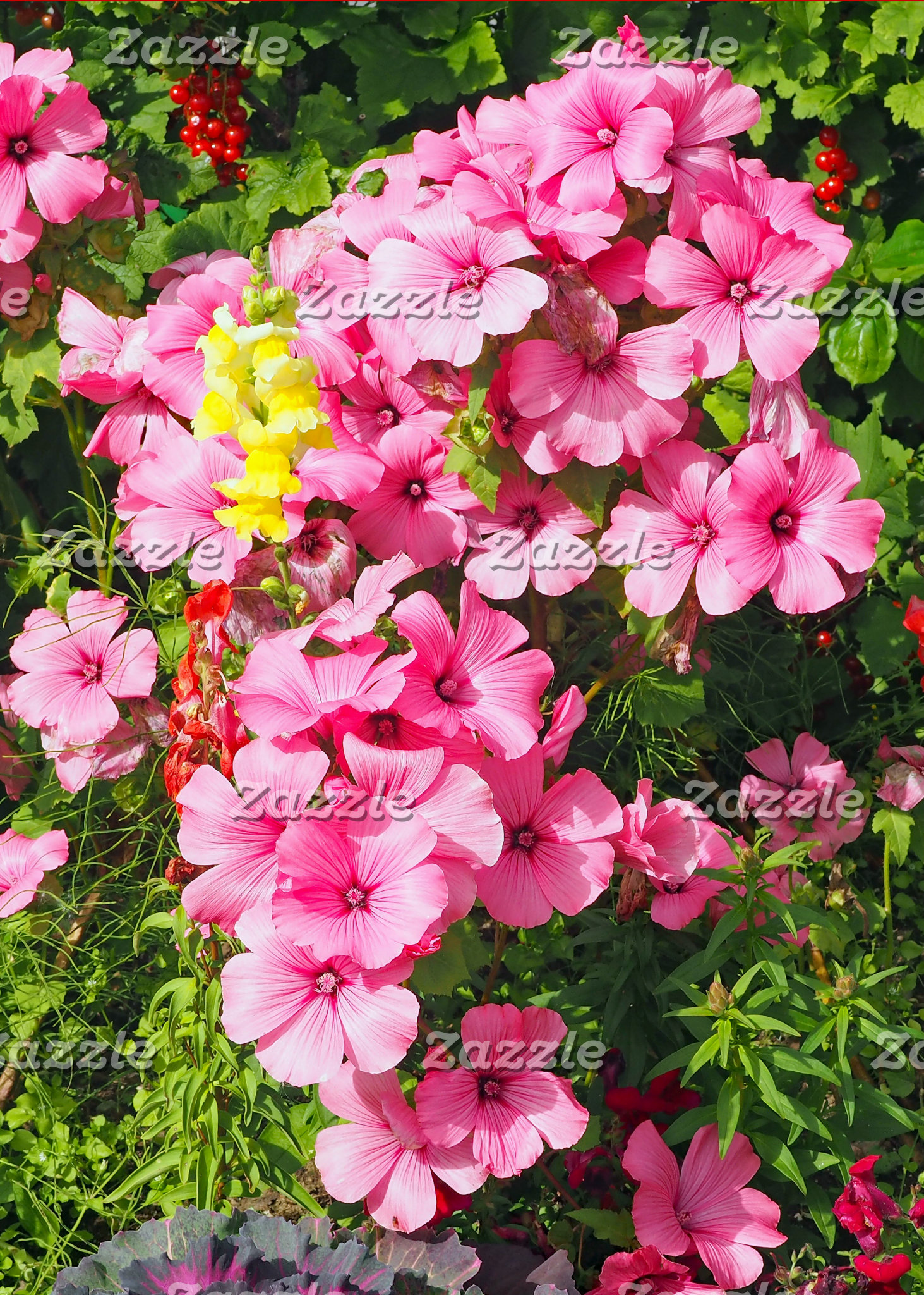 Pink Flowers 27