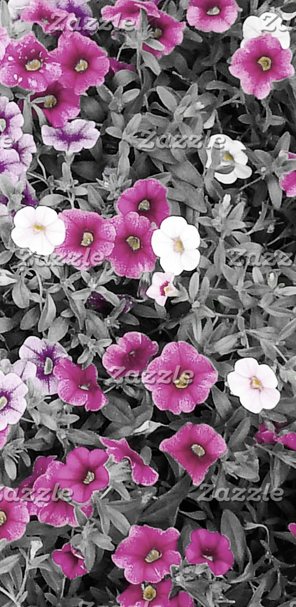 Bright and Cheery Min (Minimal Color)