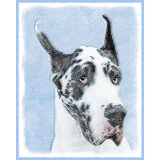 Great Dane (Harlequin)