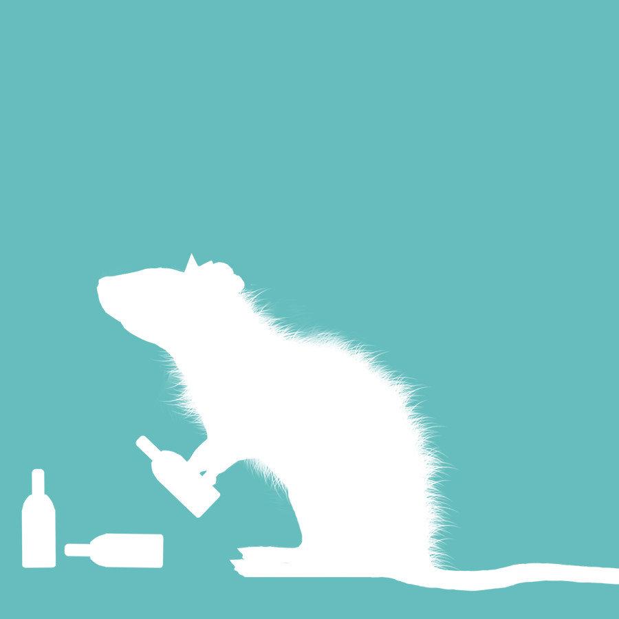 Party Rat