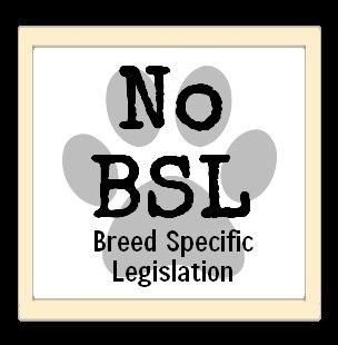 No BSL