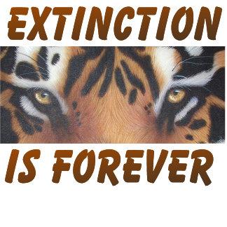 Save the Animals