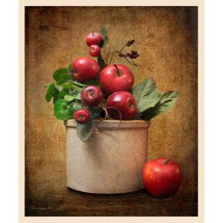 Red Apples in Crock