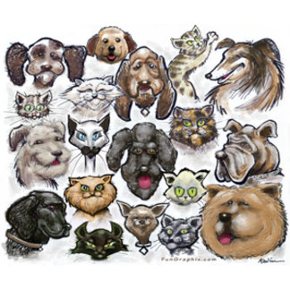 Cats n Dogs