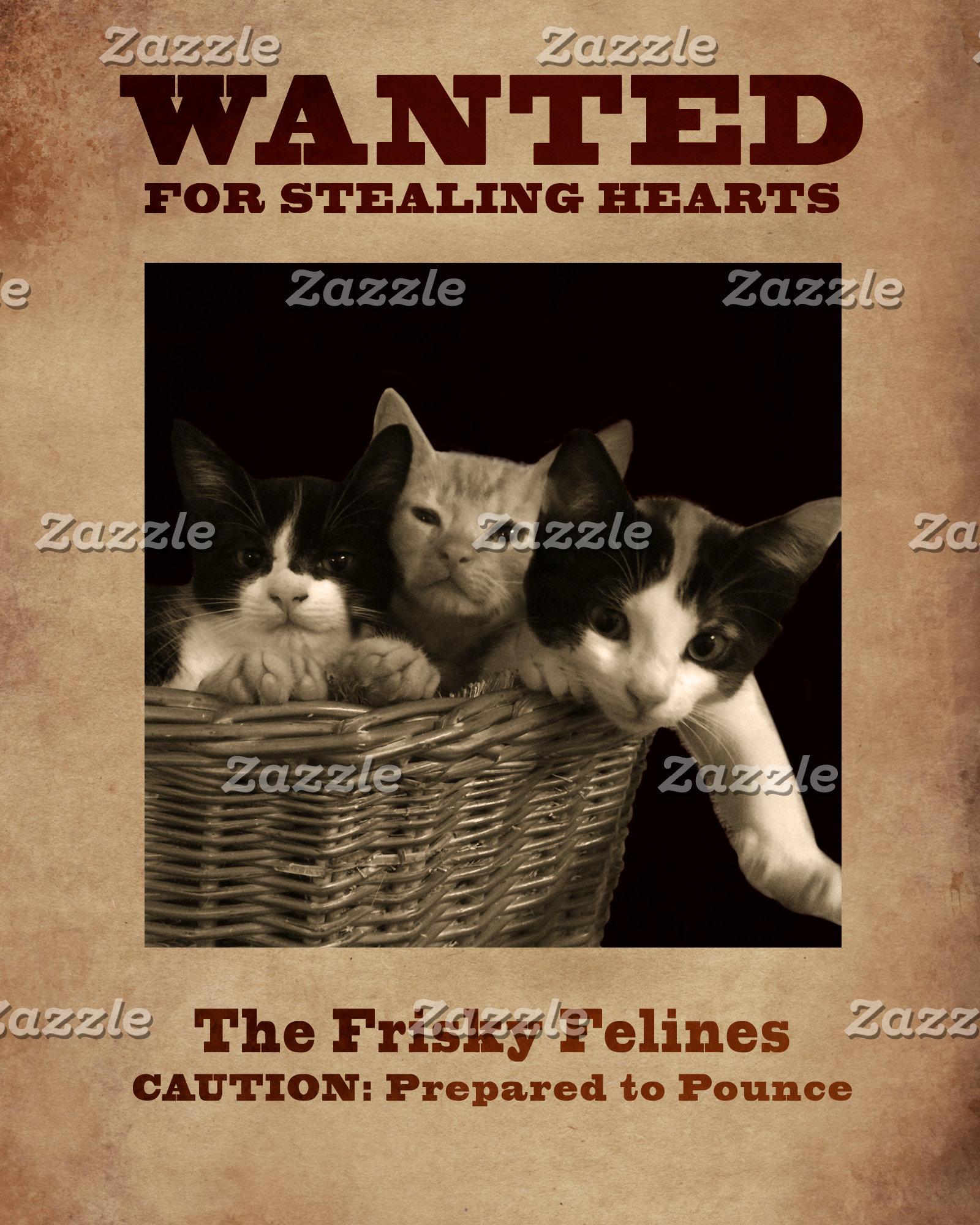 The Frisky Felines