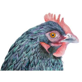 Chicken Hen Watercolour