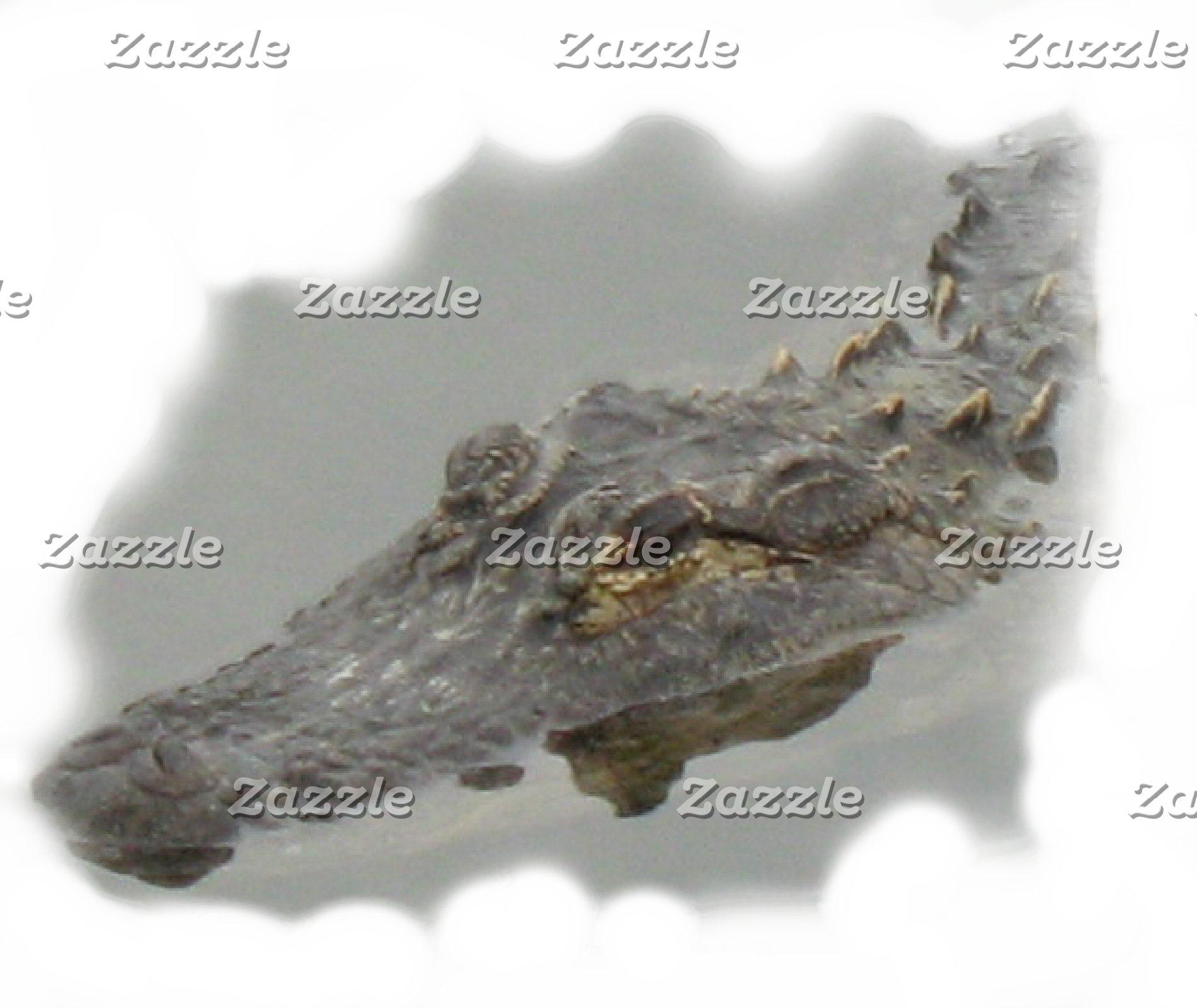 Alligators *113 items,