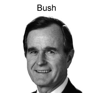 Bush Posters and Prints