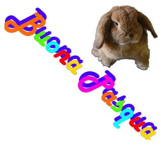 Buona Pasqua (Happy Easter)