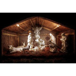 Christmas Themed Designs