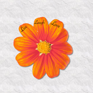 Mexican sunflower live laugh love