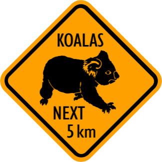 Sign: Koala Bears