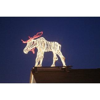 Lighted Moose 7636