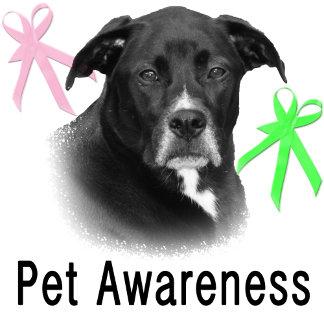 Pet Awareness