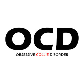 Obsessive Collie Disorder
