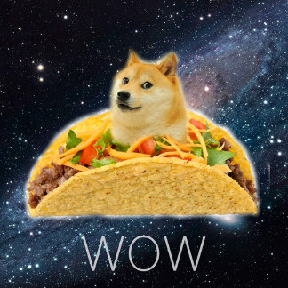 Doge taco - doge-shibe-doge dog-cute doge