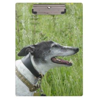 Greyhound clipboards