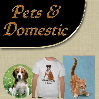 9b. DOMESTIC and PETS Gifts