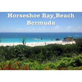 Bermuda - Horseshoe Bay Beach