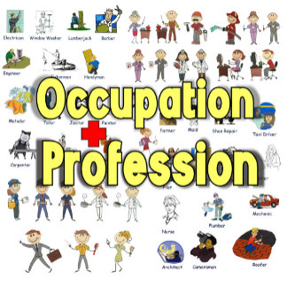 Professional - Occupation