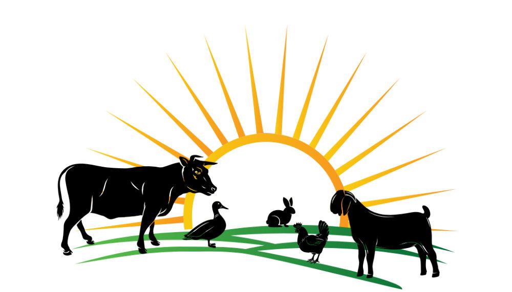 Vaden Livestock