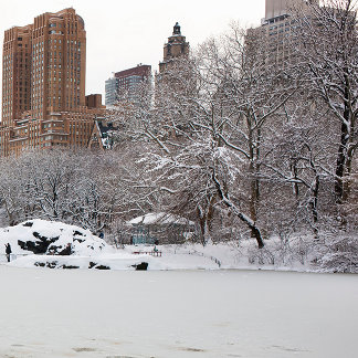 Central Park lake in winter, Manhattan, New York