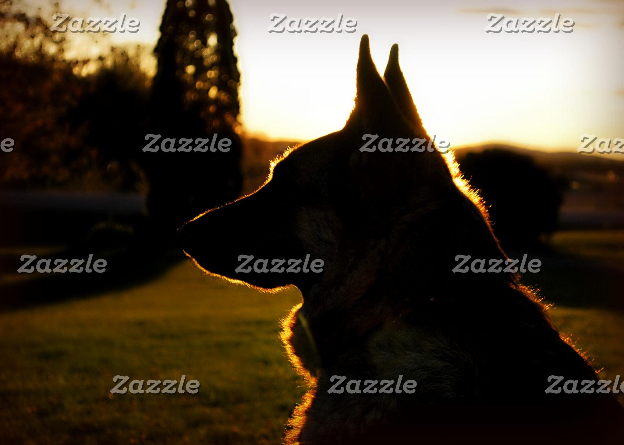 Sunset Shepherds