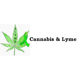 Cannabis & Lyme