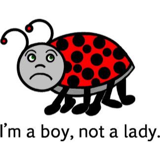 Boy Ladybug