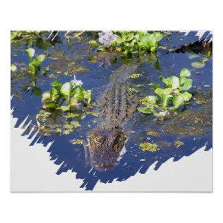Alligator Gator Hunter
