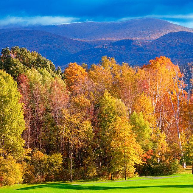 Landscape in Vermont