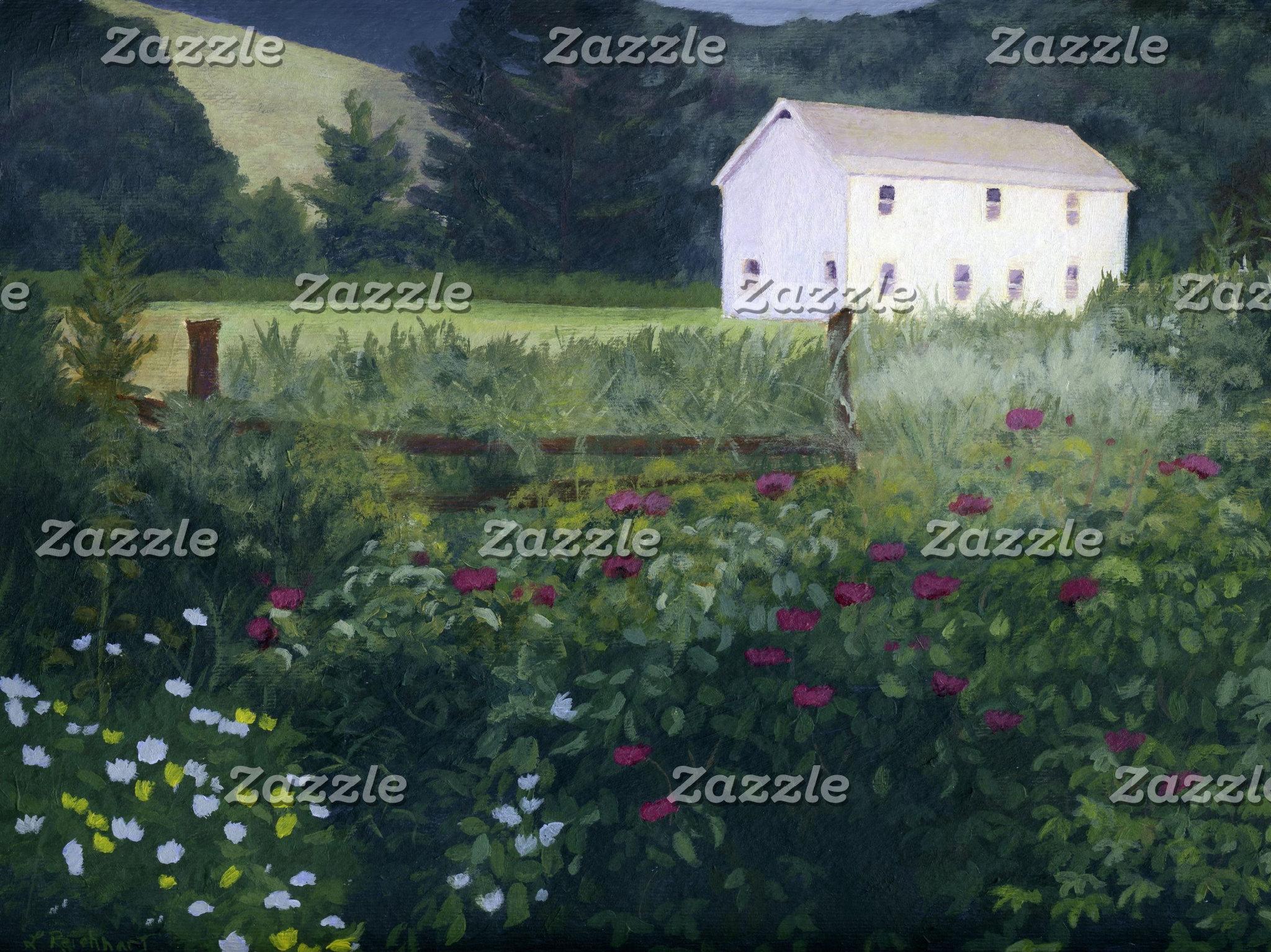 Landscape Designs