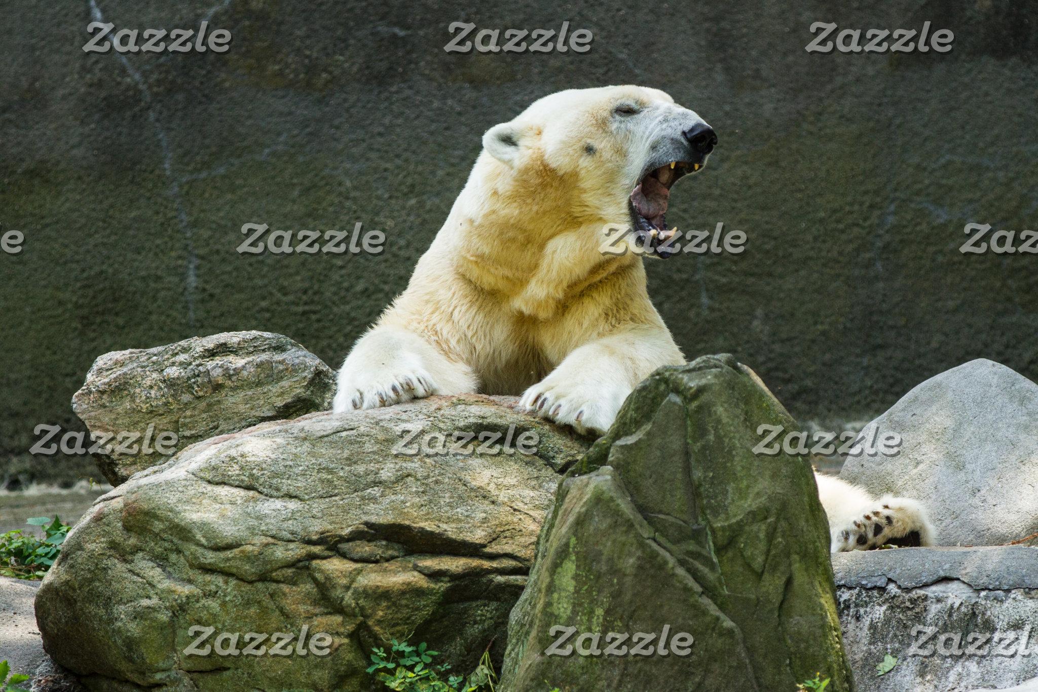 Angry Polar Bear