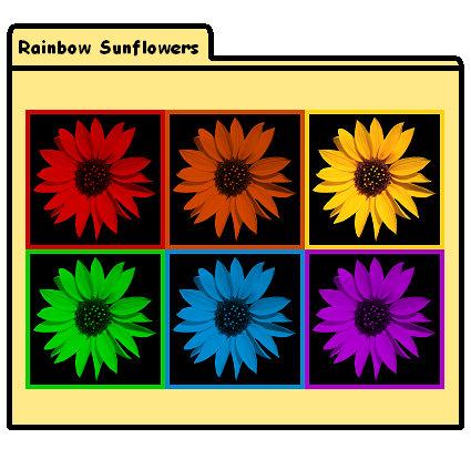 Rainbow Sunflowers