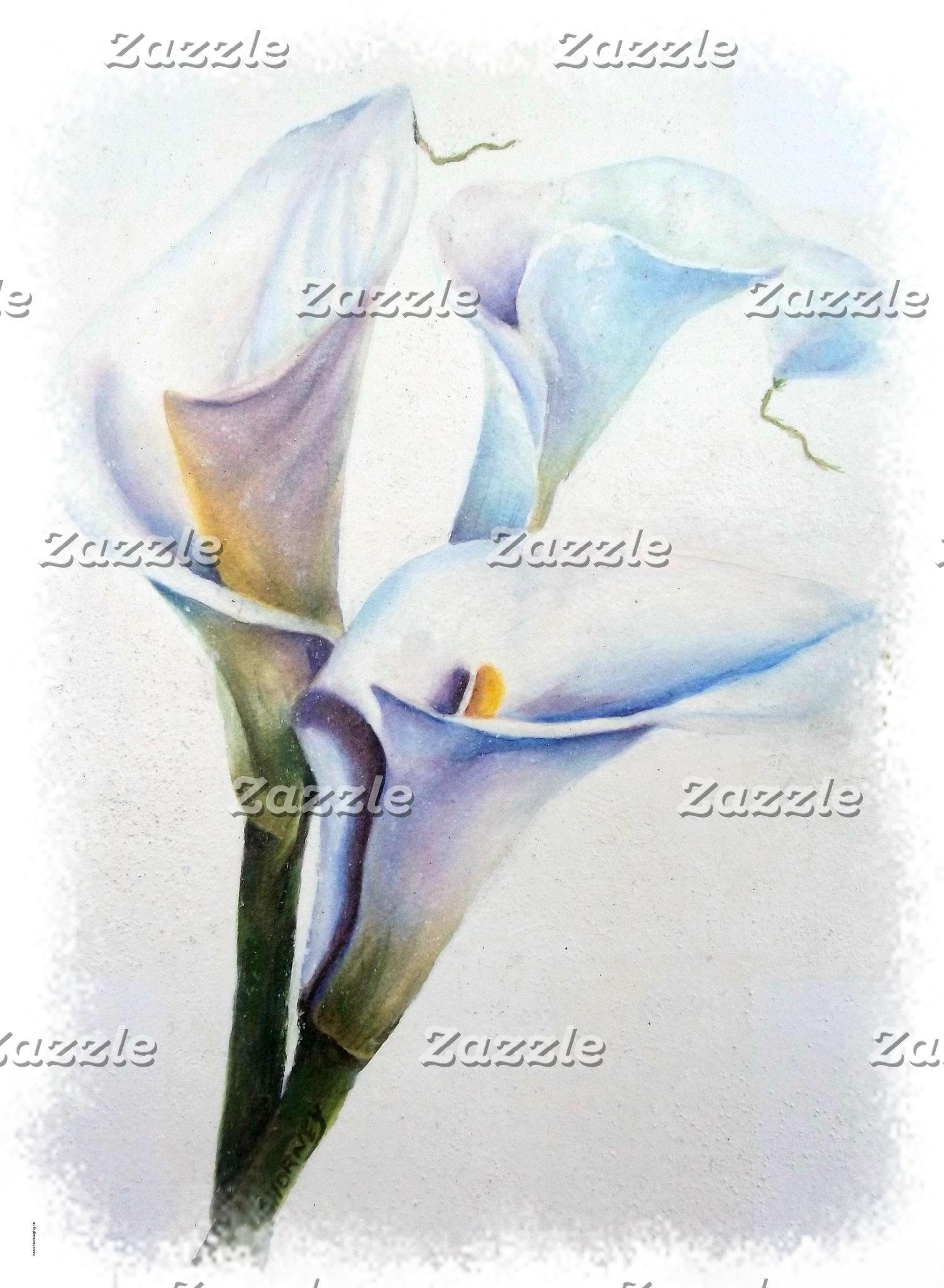Lily - CALLA