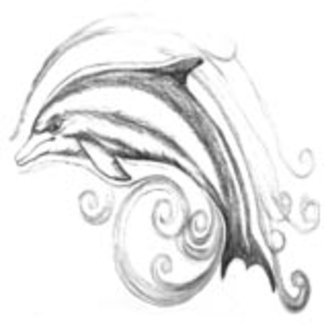Charcoal Dolphin I