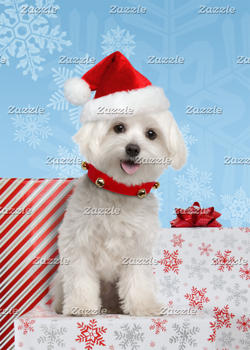 Maltese Puppy Christmas Cards and Gifts