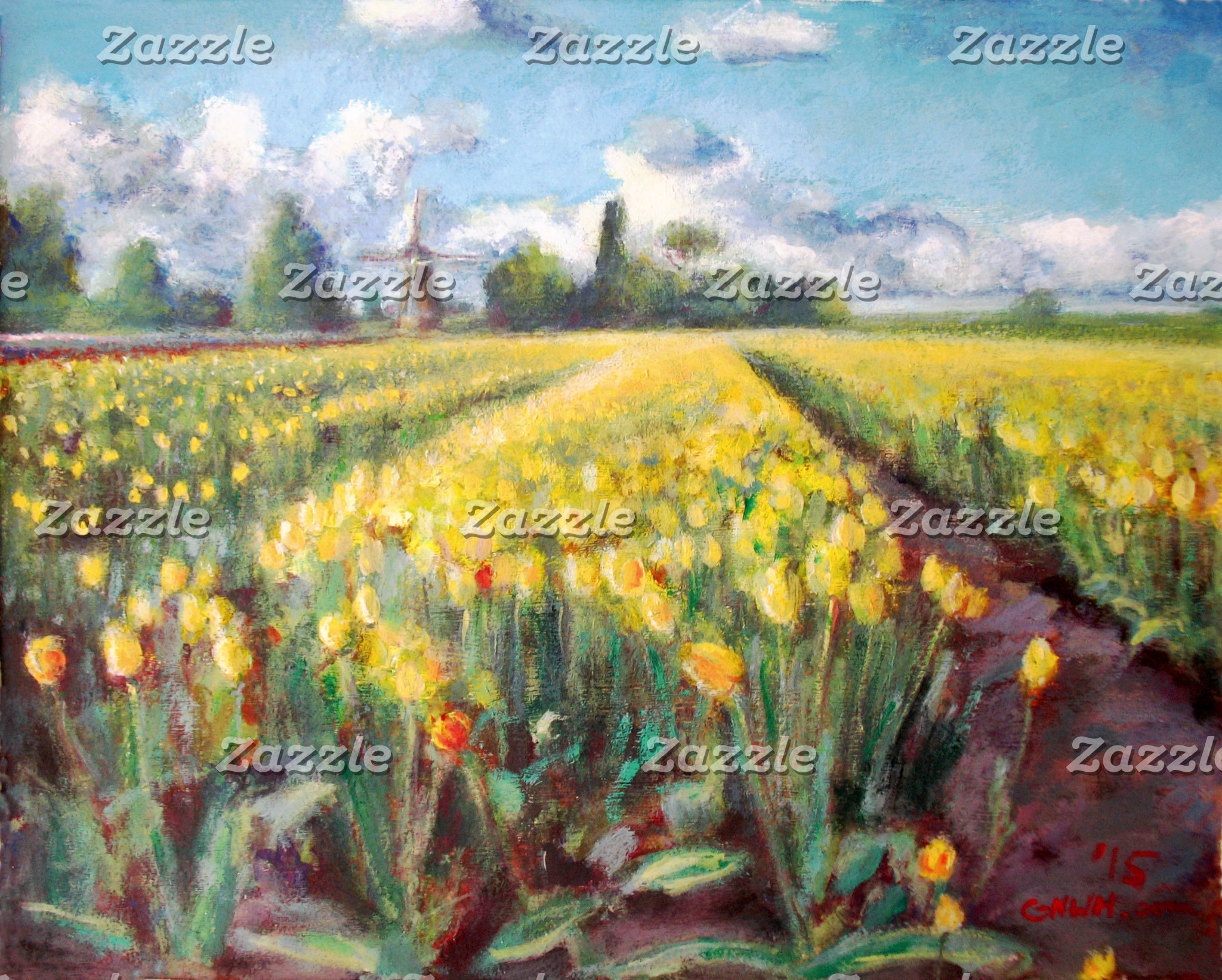 Yellow Spring Tulip Flowers Fields
