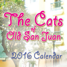 The Cats of Old San Juan