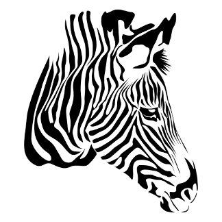 Zebra T-Shirts