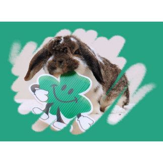 Irish Blessings & Luck / St. Patrick's Day Cards
