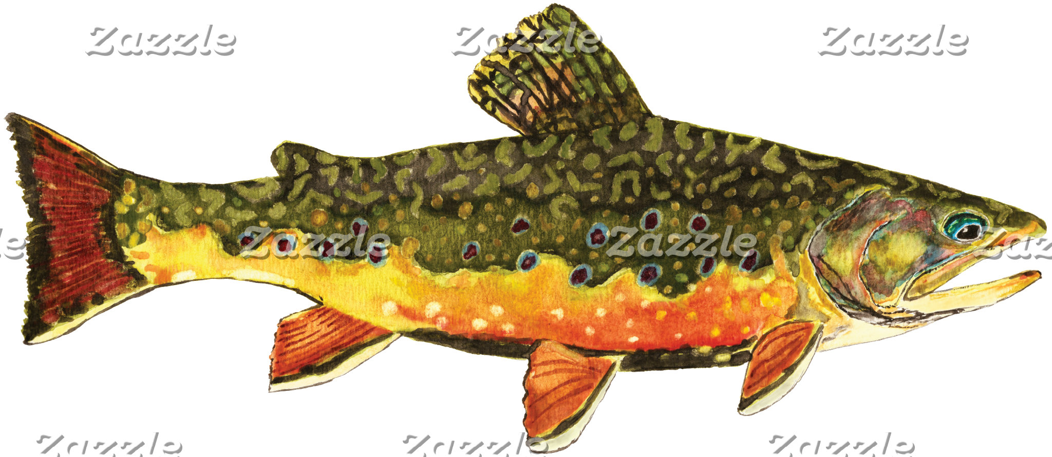 . BROOK TROUT
