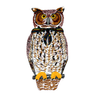 Critters: Owl