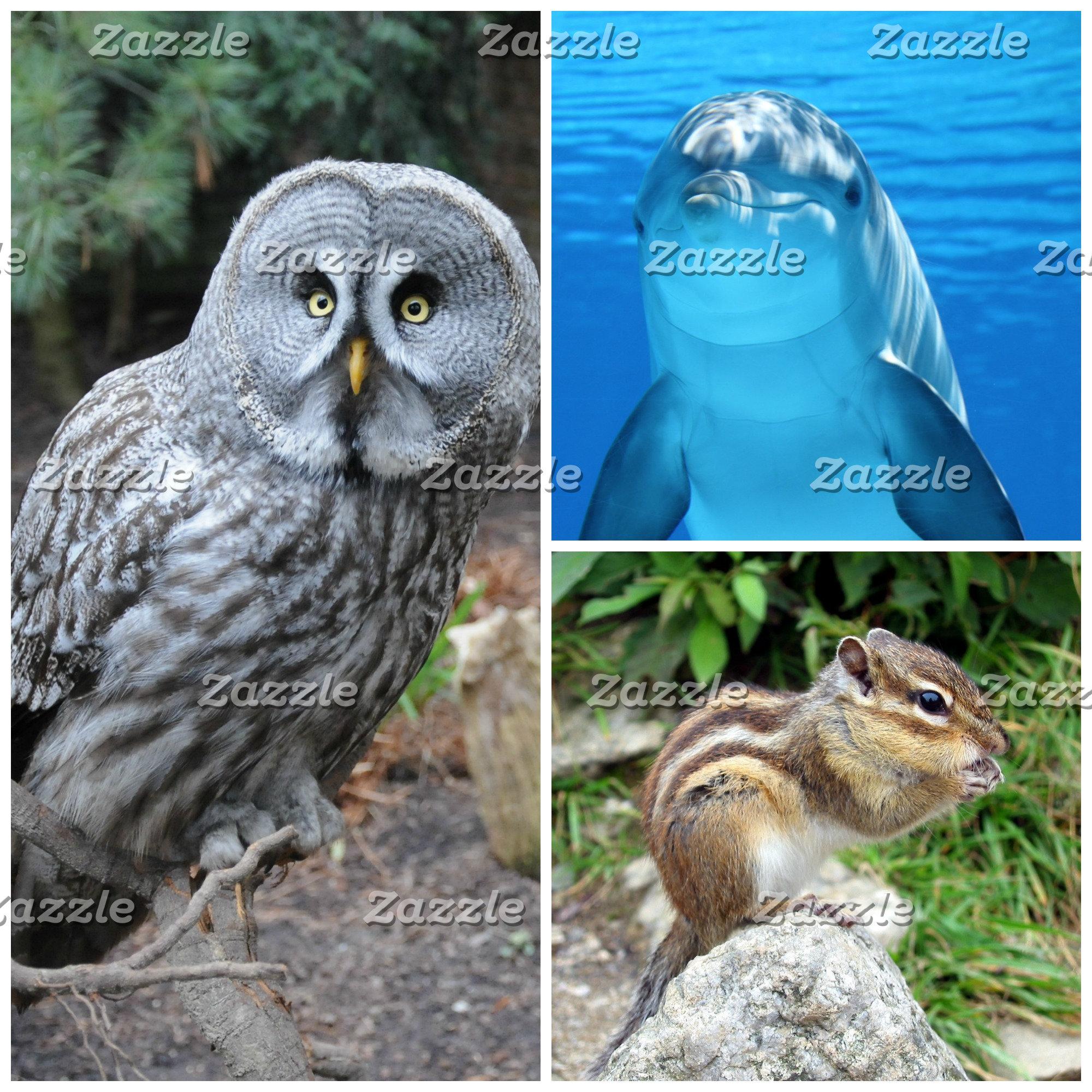 Animal Totems