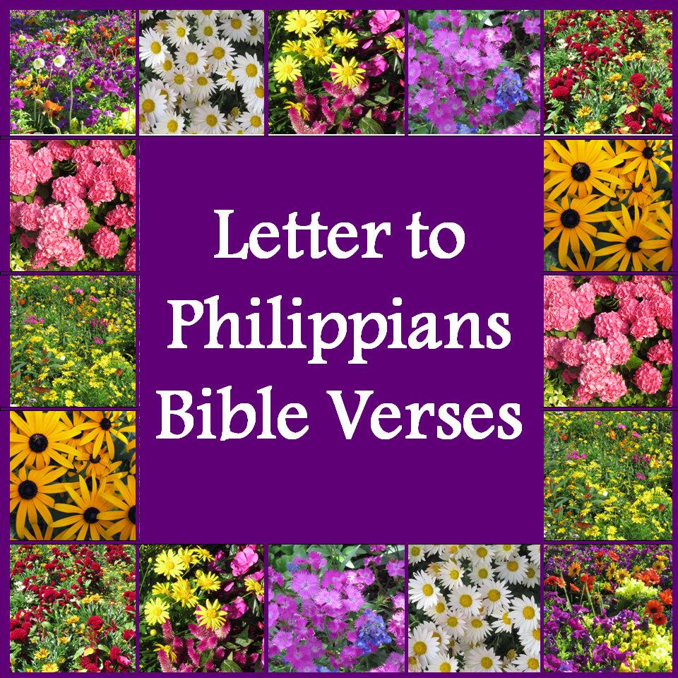Philippians Verses