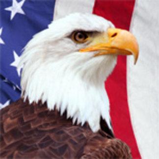 Bald Eagle and American Flag